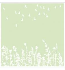 Birds & Nature Print