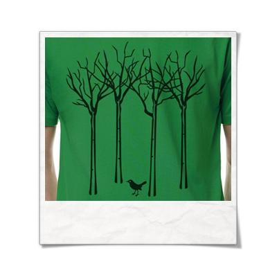 Vogel im Wald